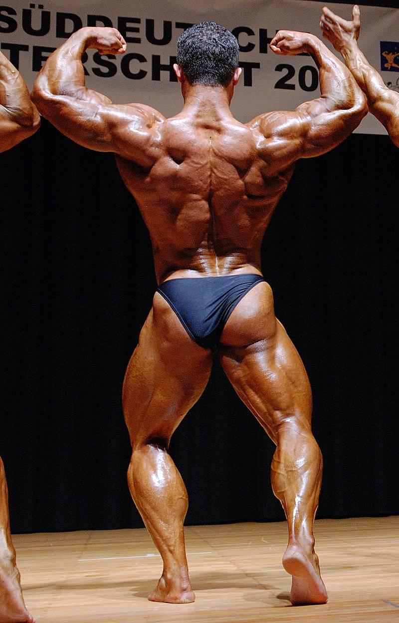 2007_sd_biceps_back